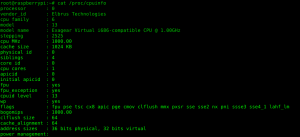 The output of /proc/cpuinfo. The screenshot only shows the first core.